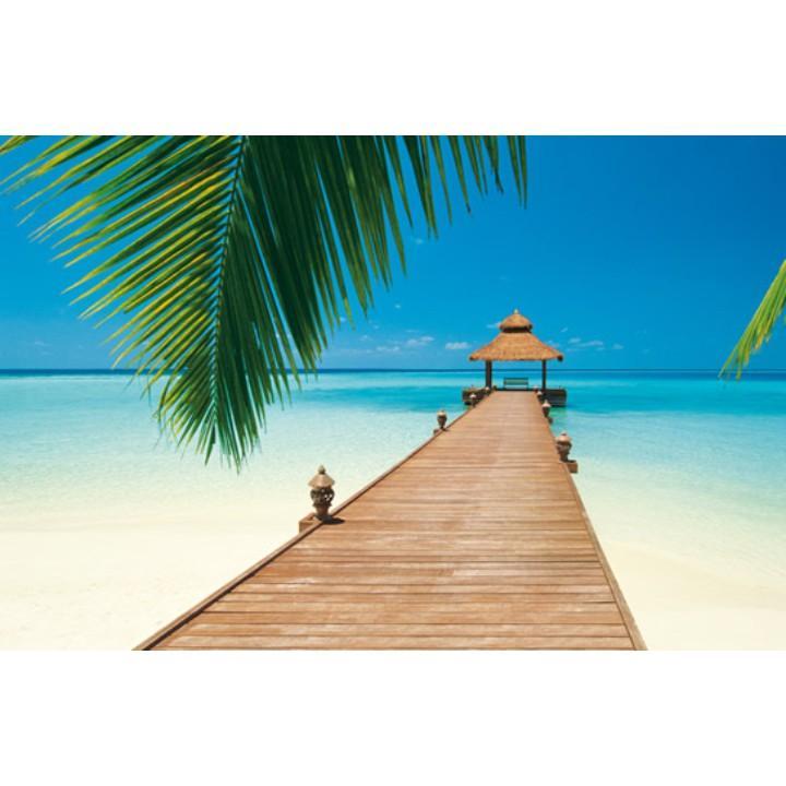 TEMPO KONDELA Fototapeta, 8 časti, pláž v karibiku