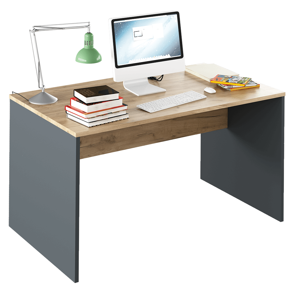 Písací stôl, grafit/dub artisan, RIOMA TYP 11