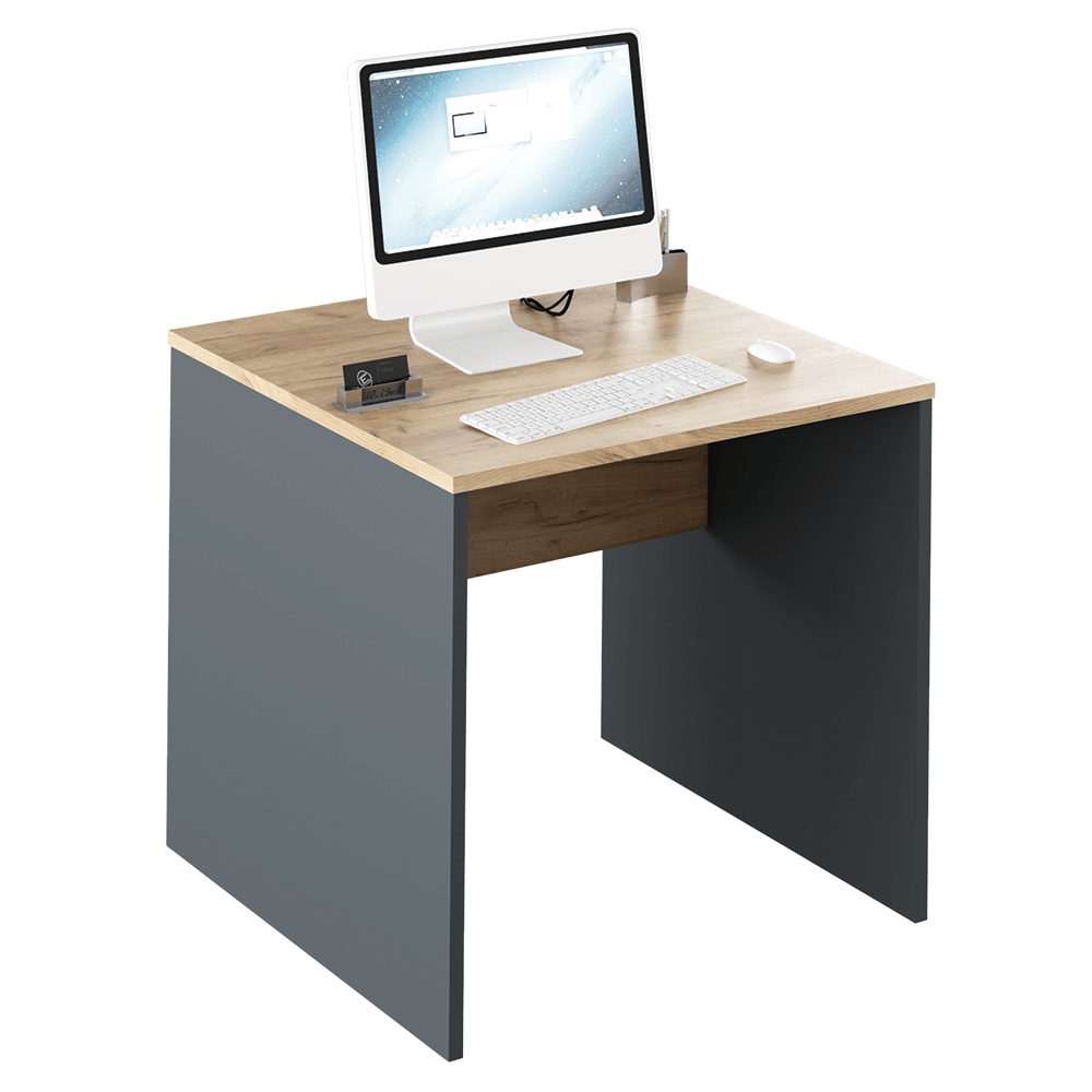 Písací stôl, grafit/dub artisan, RIOMA TYP 17