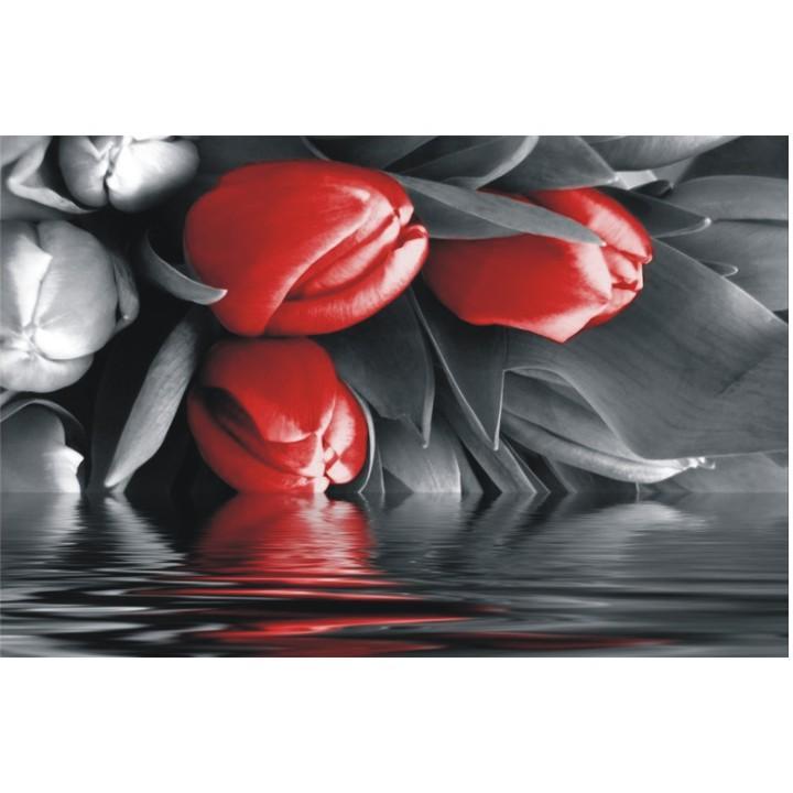 TEMPO KONDELA Obraz, s motívom, 100x40 TYP S, F002859F